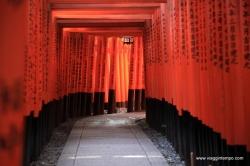 07 - Kyoto-929