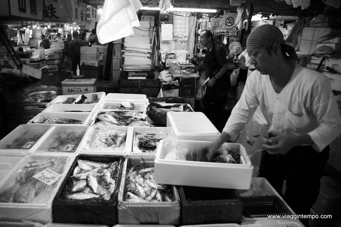 10 - Tokyo-1269 fish