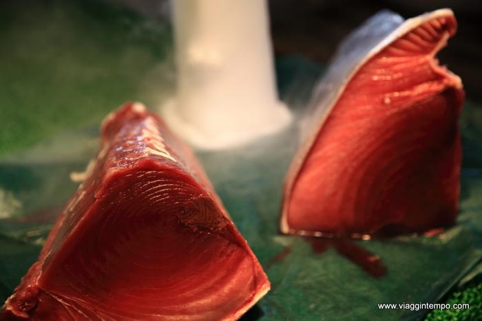 10 - Tokyo-1383 fish