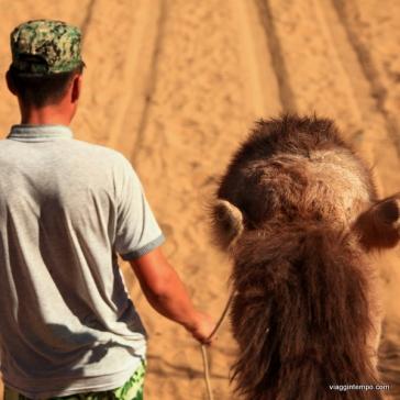 Uzbekistan: Deserto di Kyzyl Kum