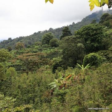 Pijao, Montagne circostanti
