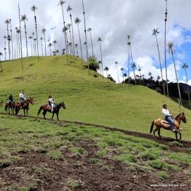 Valle del Cocora, a cavallo