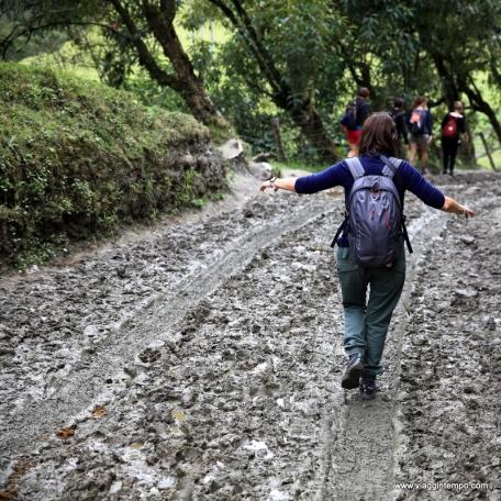 Valle del Cocora, Trekking